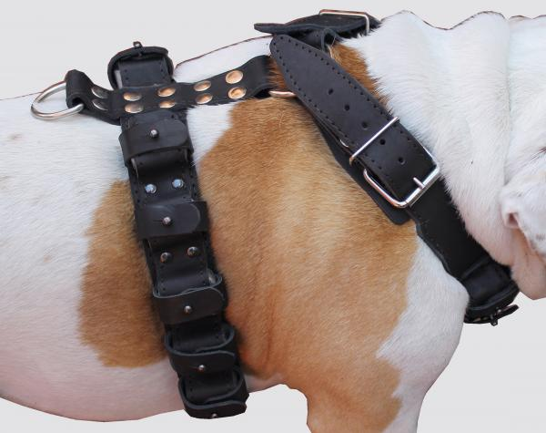7 lbs Genuine Leather Weighted Dog Harness
