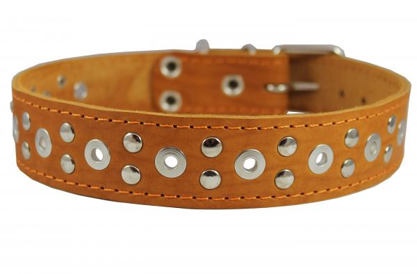 Genuine Leather Studded Red Dog Collar