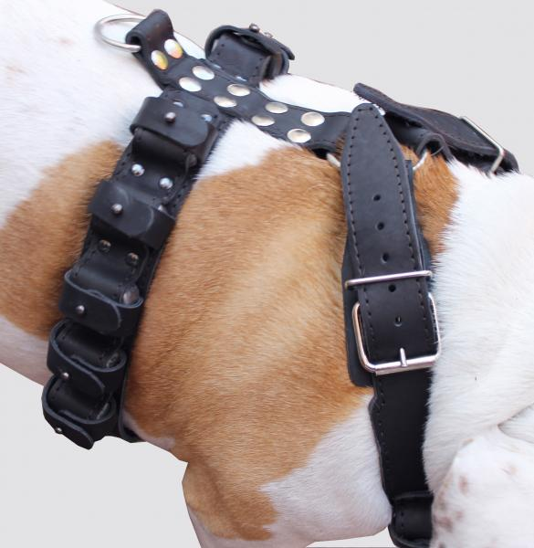 5.5lbs Genuine Leather Weighted Dog Harness