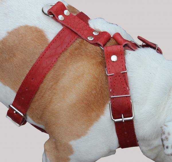 Genuine Leather Dog Harness 30
