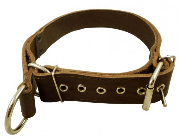 Martingale Latigo Leather Dog Collar Choker